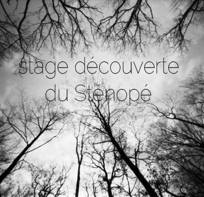 decouverte stenope