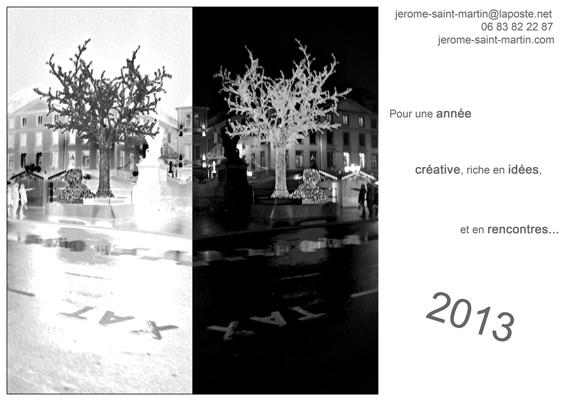 voeux-2013.jpg